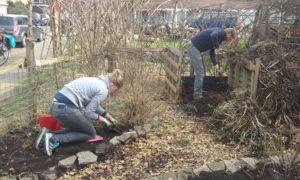 tuinwerk joost en elly